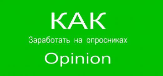 Как заработать на Opinion